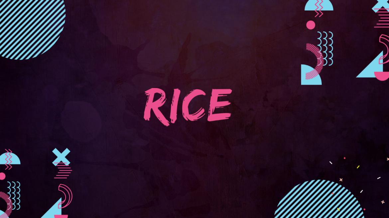 Rice Coin Nedir? Rice Coin Ön Satış